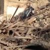 Ricostruzione terremoto, spunta una sanatoria lampo per il Centro Italia