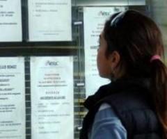 disoccupati - bando disoccupati over 30