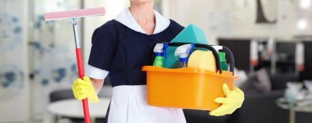 donna delle pulizie