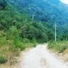 Terremoto, la bretella della discordia: petizione per fermare l'Anas
