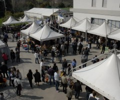 Mercatino di solidarietà Ascoli Piceno, ospite Papa Waigo