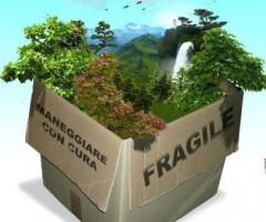 ecologia-sostenibilita