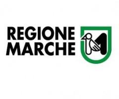 regione-marche-300x262