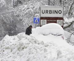 coldiretti, corsa Regione Marche ai fondi per il maltempo
