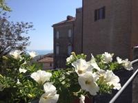 La fioriera_di_un_balcone_del_centro_storico