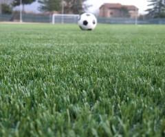 pallone-erba