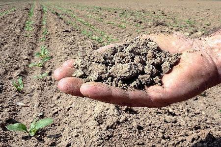 agricoltura-siccita