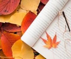 percorsi letterari novembre