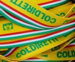 coldiretti-500x261