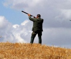 Fiera della caccia e cinofilia