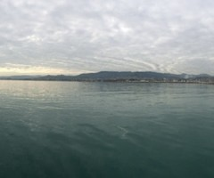 Stella Bianca, Naufragio al porto di San Benedetto del Tronto