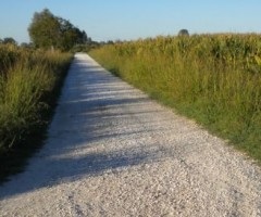 Grottammare e Offida si uniscono per la manutenzione del patrimonio e delle strade bianche