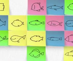 pesce d'aprile eventi ascoli piceno