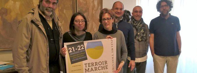 terroir marche 2016