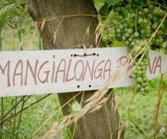 mangialonga picena