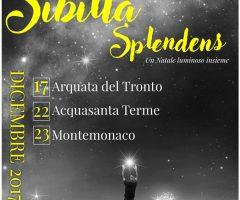 Sibilla Splendens