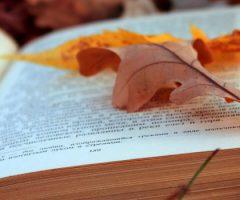 quattro libri per l'autunno
