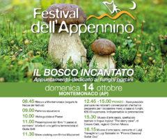 festival dell'appennino 2018 - 14 ottobre