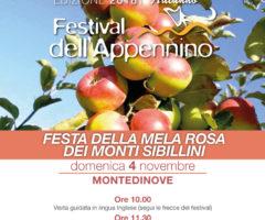 mela rosa montedinove- festival dell'Appennino 2018