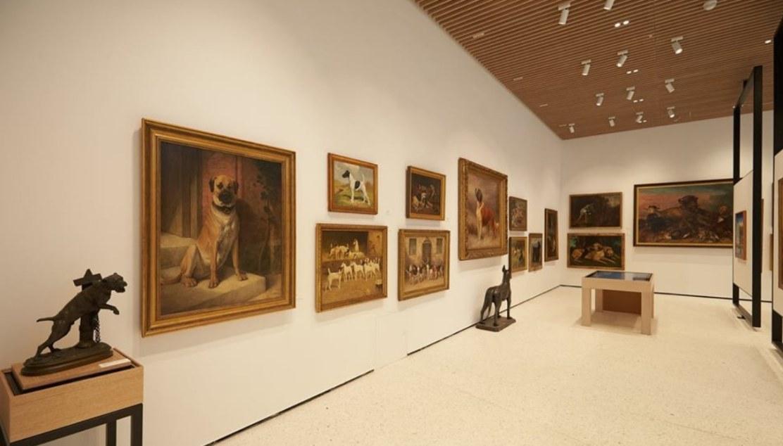 museo del cane