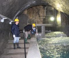 pescara del tronto acquedotto antisismico