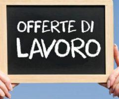 Lavoro Ascoli Piceno