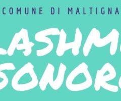 Flashmob sonoro Comune Maltignano