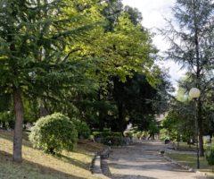 Ascoli Green