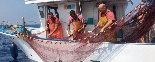 Fermo pesca 2020