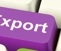 Esportazioni Marche