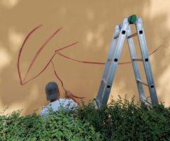 street art ANFFAS