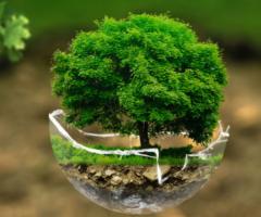 cna transizione ecologica